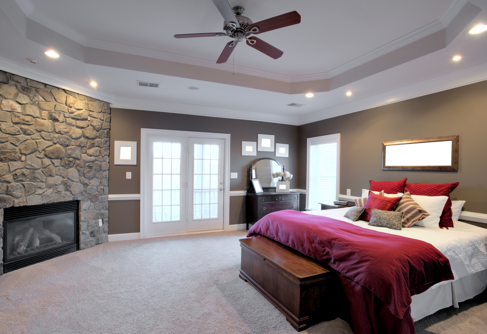 Contemporary Large Bedroom Interior